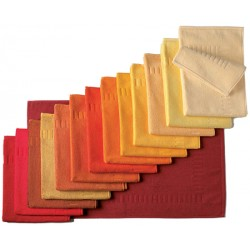 Tapis de bain 100% coton 50x70 cm 700g gamme rouges