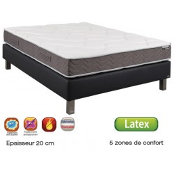 Matelas latex Epsilon anti-punaise 5 zones 90x190 cm